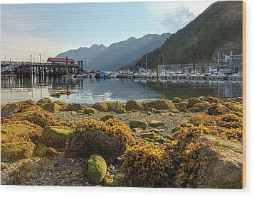 Low Tide At Horseshoe Bay Canada Wood Print by David Gn