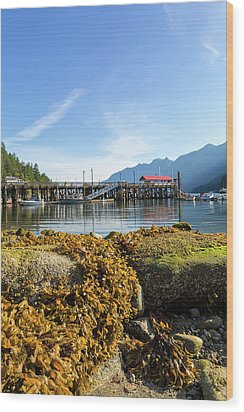 Low Tide At Horseshoe Bay Canada On A Sunny Day Wood Print by David Gn