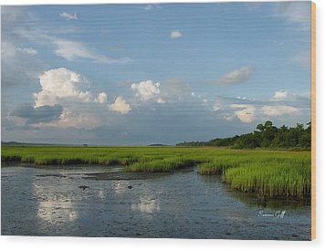 Low Tide Wood Print by Suzanne Gaff