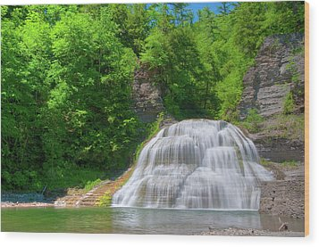 Wood Print featuring the photograph Lower Falls 0485 by Guy Whiteley