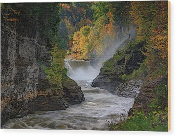 Lower Falls Of The Genesee River Wood Print by Rick Berk