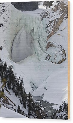 Lower Falls Of Yellowstone II Wood Print by Mary Haber