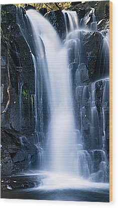 Lower Johnson Falls 3 Wood Print by Larry Ricker