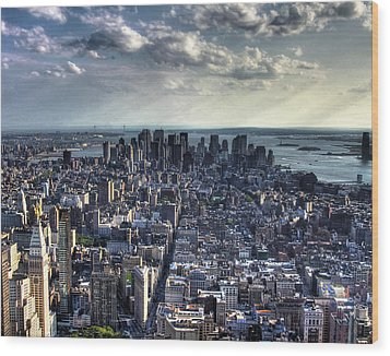 Lower Manhattan From Empire State Building Wood Print by Joe Paniccia