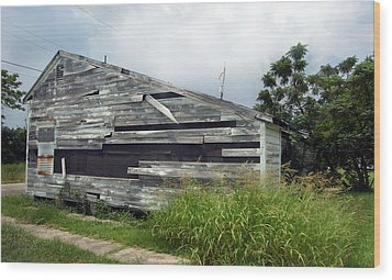 Lower Ninth Ward Wood Print by Heather S Huston