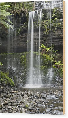 Lower Russell Falls Tasmania  Wood Print