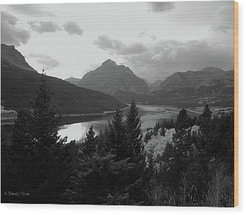 Lower Two Medicine Lake In Black And White Wood Print