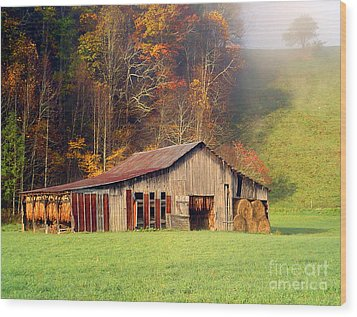 Lowes Barn Wood Print by Annlynn Ward
