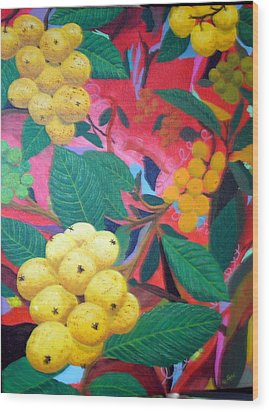Lowquats In Hot Spring Wood Print by Hilda and Jose Garrancho