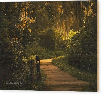 Wood Print featuring the photograph Loxahatchee Boardwalk by Don Durfee