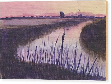 Loxahatchee Sunset Wood Print by Donna Walsh