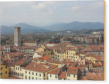 Lucca Aerial Panoramic View With Piazza Dell' Anfiteatro Wood Print by Kiril Stanchev