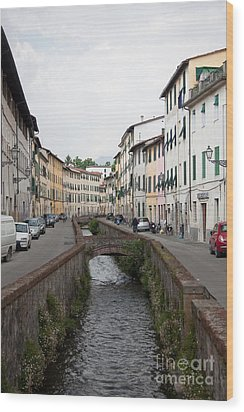 Lucca Wood Print by Steven Gray