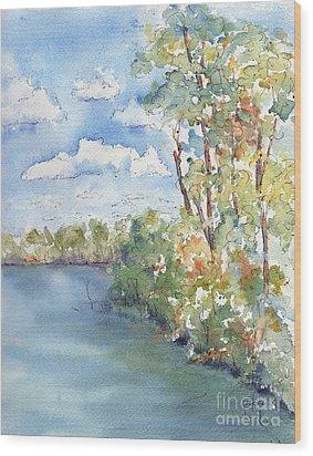 Lucien Lake Shoreline Wood Print by Pat Katz