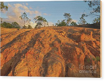 Ludo Red Sands. Algarve Wood Print by Angelo DeVal