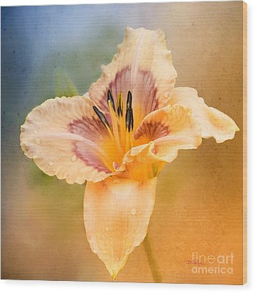 Wood Print featuring the photograph Luminosity by Betty LaRue