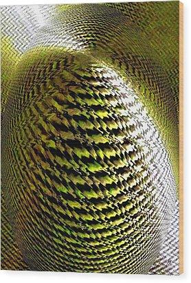 Luminous Energy 11 Wood Print by Will Borden