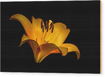 Luminous Lilly Wood Print