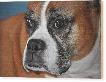 Wood Print featuring the photograph Luna The Boxer 01 by John Knapko