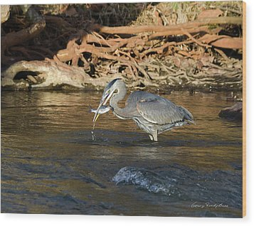 Wood Print featuring the photograph Lunch On The Neuse River by George Randy Bass