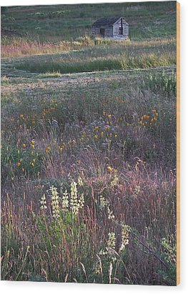Wood Print featuring the photograph Lupine by Laurie Stewart