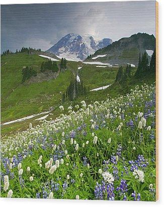 Lupine Storm Wood Print by Mike  Dawson