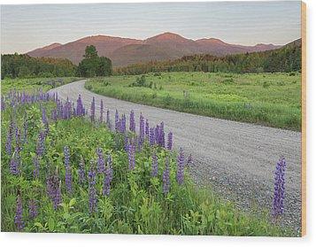 Lupine Sunset Road Wood Print