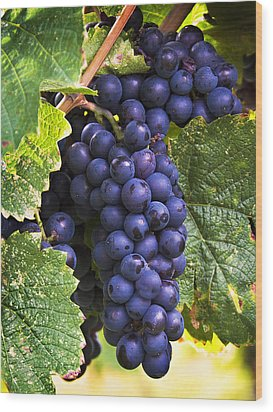 Luscious Grape Cluster Wood Print by Marion McCristall