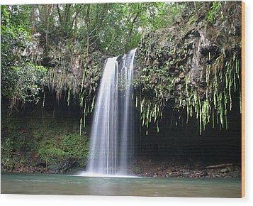 Lush Tropical Waterfall Twin Falls On Maui Hawaii Wood Print by Pierre Leclerc Photography