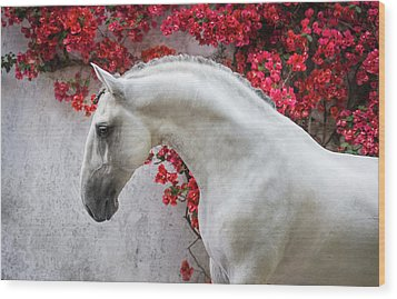 Lusitano Portrait In Red Flowers Wood Print by Ekaterina Druz