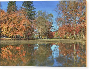 Wood Print featuring the photograph Lykens Glen Reflections by Lori Deiter