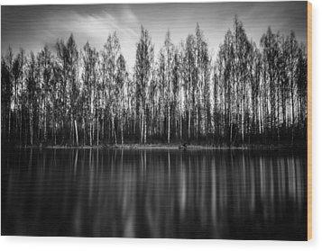 Lyrica Wood Print by Matti Ollikainen