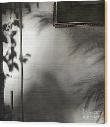 Wood Print featuring the photograph Lysiloma Shadows by Kim Nelson