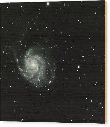 M-101, The Pinwheel Galaxy Wood Print by A. V. Ley