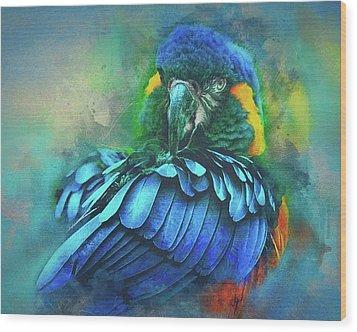 Macaw Magic Wood Print by Brian Tarr
