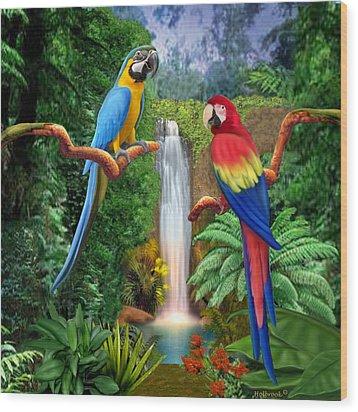 Macaw Tropical Parrots Wood Print by Glenn Holbrook