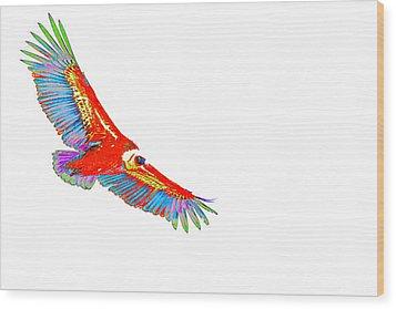 Macaw Vulture Wood Print