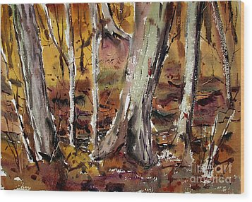 Wood Print featuring the painting Macconaquah Park Frizbee Creek Matted Glassed Framed by Charlie Spear