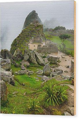 Machu Picchu Peru Wood Print by Andre Distel