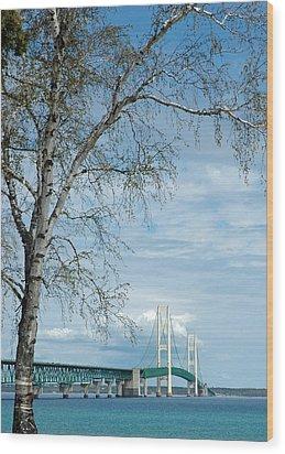 Mackinac Bridge Birch Wood Print