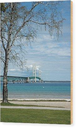 Wood Print featuring the photograph Mackinac Bridge Park by LeeAnn McLaneGoetz McLaneGoetzStudioLLCcom
