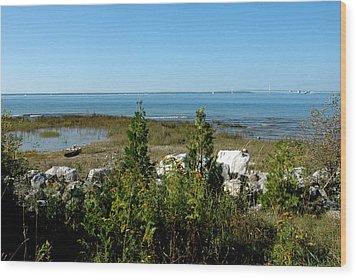 Wood Print featuring the photograph Mackinac Island View Of Bridge by LeeAnn McLaneGoetz McLaneGoetzStudioLLCcom