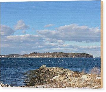 Mackworth Island Falmouth Maine Wood Print