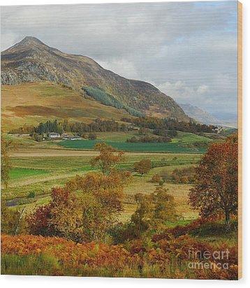 Macpherson Autumn - The Clan Macphersons Seat  Wood Print by John Kelly