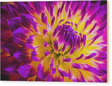 Macro Flora Wood Print