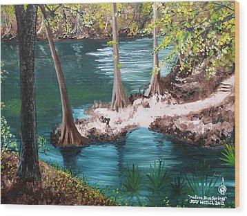 Madison Blue Springs Wood Print