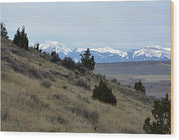 Madison Buffalo Jump State Park In Spring Wood Print by Bruce Gourley