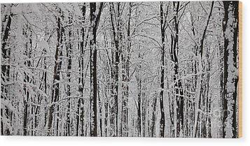 Magic Forest Wood Print by Gabriela Insuratelu