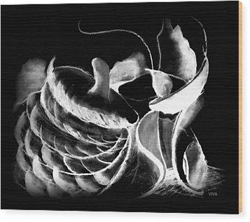 Magic Mushrooms Wood Print