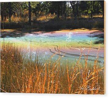 Magic Pond Wood Print by Melissa Wyatt
